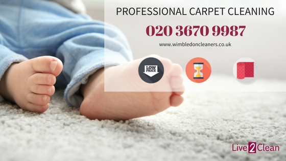 Professional carpet cleaning in Wimbledon