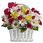 Low Cost Flowers Delivery in Delhi
