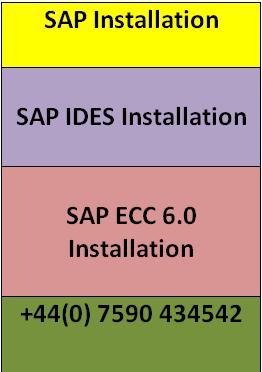 SAP Ides Installation | SAP Remote Access | SAP Installation in Central London
