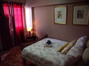 Flat for rent in Metro Manila, private adsl internet, credit card boooking, check-in 24h, Mayfields