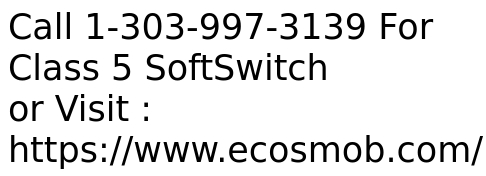 VoIP Class 5 Softswitch Development